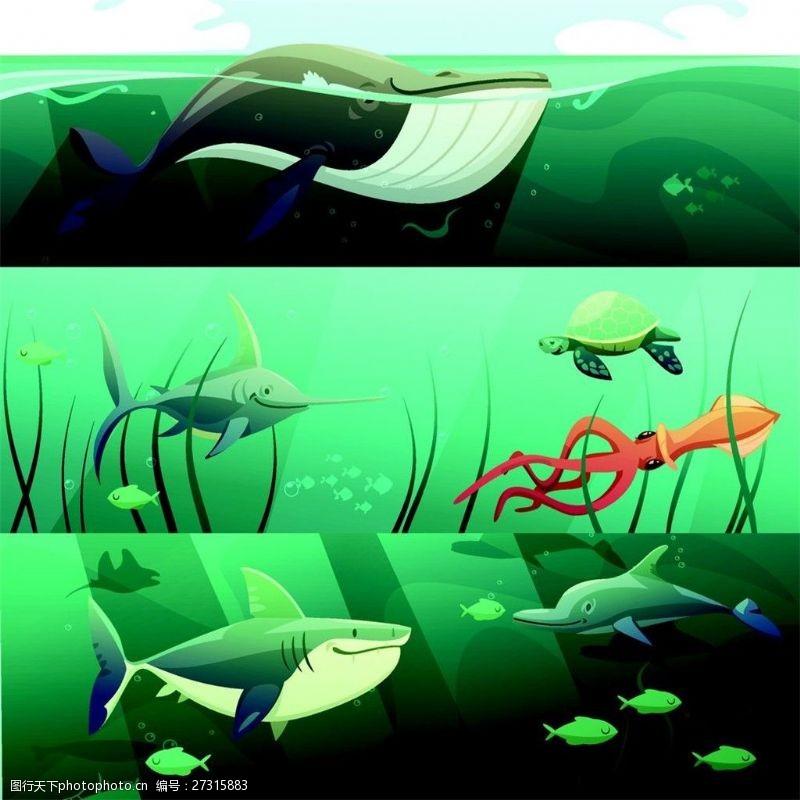 海洋动物漫画图片