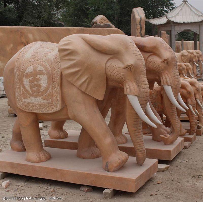 晚霞红大象图片素材教学设计一等奖猫图片