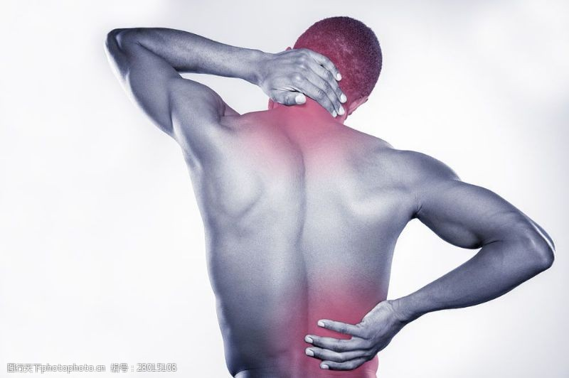 人体器官图颈椎与腰椎疼痛图片