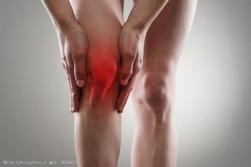 人体器官图膝关节疼痛图片