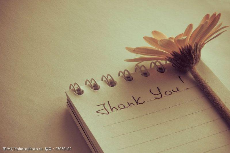 thankyou笔记本上的谢谢字母图片