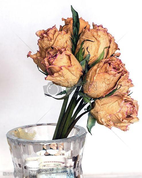 玫瑰花干花花瓶里的玫瑰花