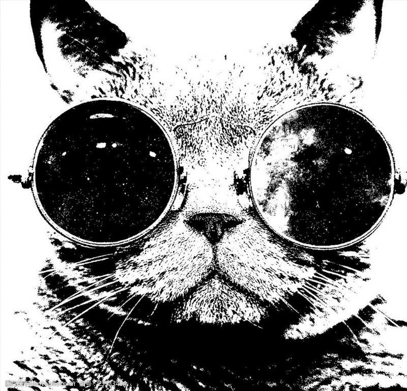 墨镜猫素材