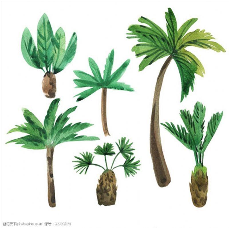 夏季风情矢量素材六款手绘水彩棕榈树