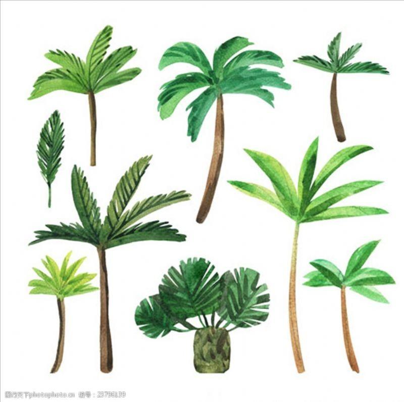 夏季风情矢量素材手绘水彩各种棕榈树