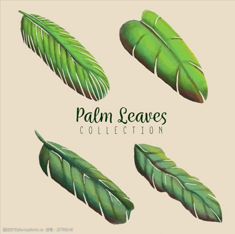 夏季风情矢量素材四款手绘水彩绿色棕榈叶