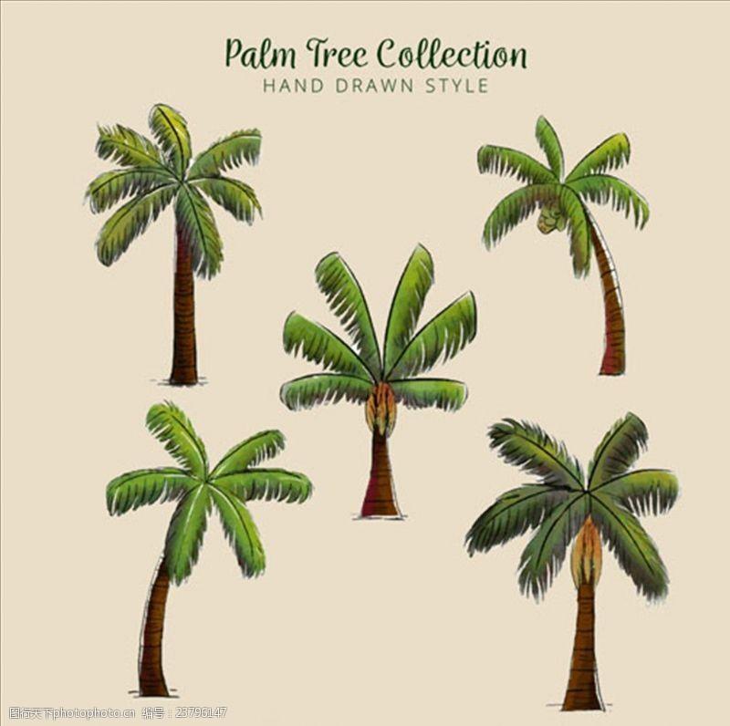 夏季风情矢量素材五款手绘水彩棕榈树