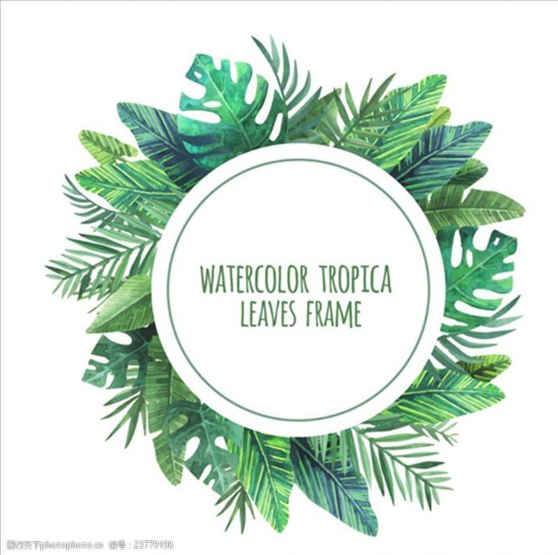 夏季风情矢量素材手绘水彩热带叶子的圆框