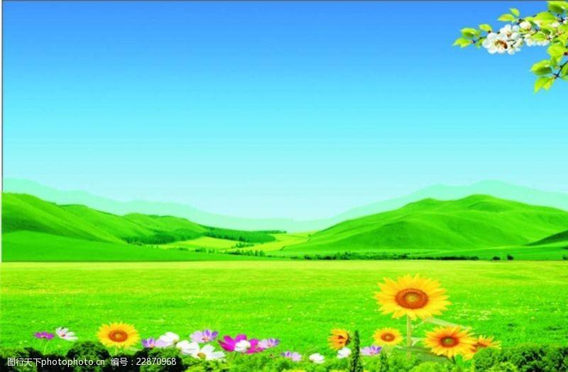 草地蓝天花朵草地蓝天风景