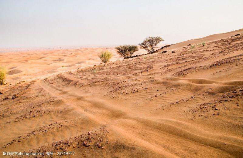 野外运动沙路