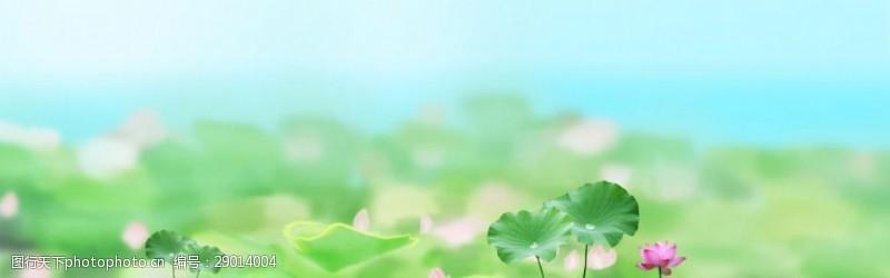夏日梦幻荷花淘宝全屏banner背景