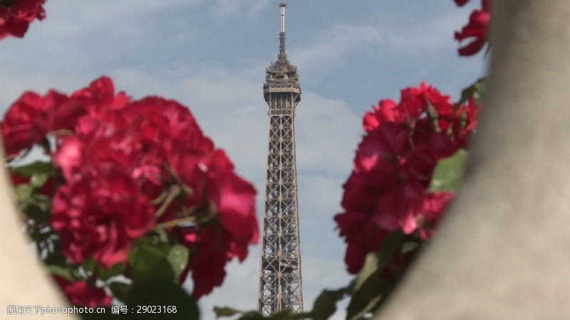 flowers埃菲尔铁塔和RedFlowers